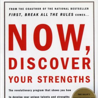 Now Discover Your Strengths Book